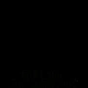 logo_ribb